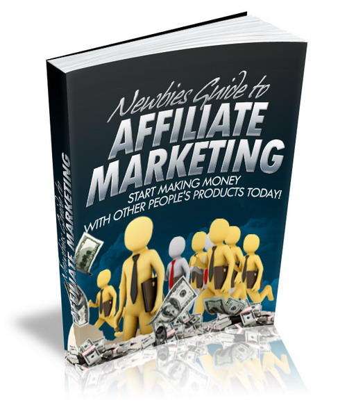 Thumbnail Newbies Guide to Affiliate Marketing with MRR