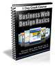 Thumbnail Business Web Design Basics comes with PLR